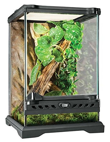 Exo Terra Glass Natural Terrarium Nano/Tall - 8 x 8 x 12 Inches - Glass Reptile Terrarium
