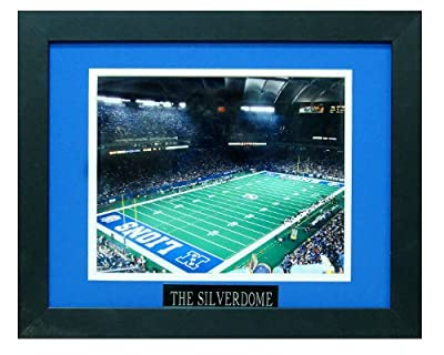 Pontiac Silverdome. Home of the Detroit Lions. Professionally Matted an Framed 8x10 Photo to an 11x14