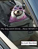 My dog went blind - Now WHAT?!