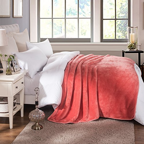 HYSEAS Heavy Weighted and Thick Blanket, Extra Soft and Plus
