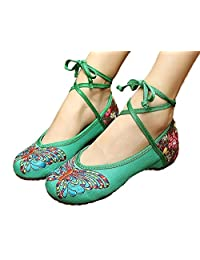 ZYZF Women Chinese Butterfly Embroidered Oxfords Rubber Sole Mary Jane Dance Flat Shoes