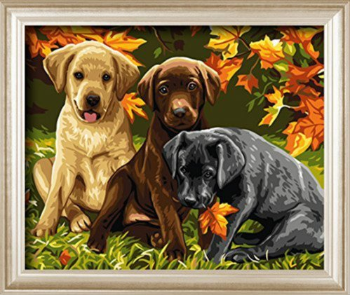 Diy painting, paint by number kit-Charming Autumn 1620 inches Frameless (Three Dogs)