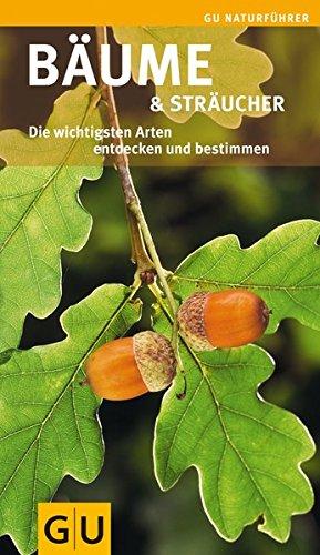 Bäume & Sträucher: Die wichtigsten Arten entdecken und bestimmen