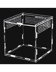 Keweni Feeding Box, 360° przezroczysty akrylowy pojemnik do terrarium na spirale, skorpion, chrząszcz, beterin, gadów, przestrzeni życiowej