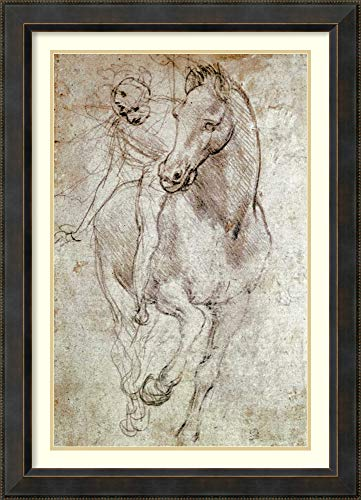 Framed Wall Art Print Horse and Rider by Leonardo da Vinci 28.12 x 39.00