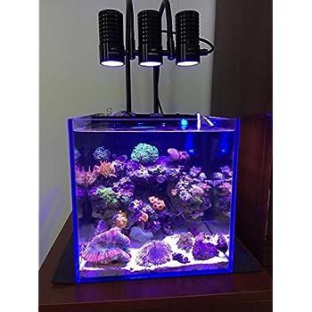 Amazon.com : Marine LED light coral SPS LPS grow mini nano
