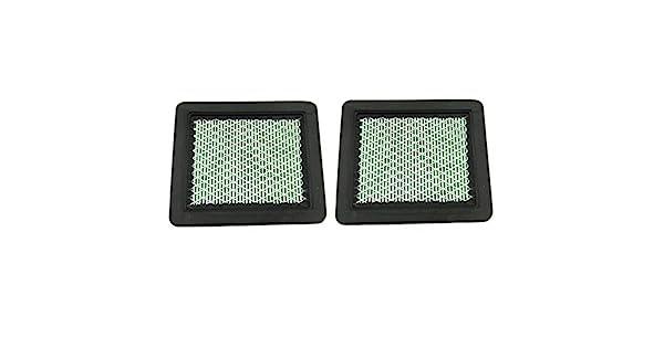 Amazon.com: Paquete de 2 filtro de aire para motor Honda ...