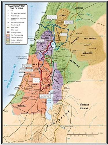 Cartina Muta Della Palestina.Amazon Com B H Publishing Group 469617 Map Palestine In The Time Of Jesus 19 25 X 26 In Office Products