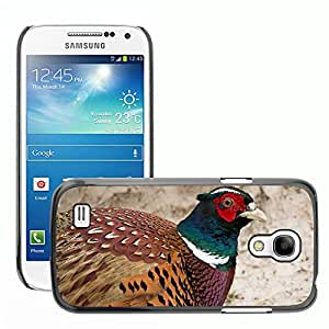 Super Stella Slim PC Hard Case Cover Skin Armor Shell Protection // M00147032 Pheasant Males Bird Colorful Feather // Samsung Galaxy S4 Mini i9190