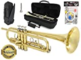 D'Luca 500L 500 Series Brass Standard Bb Trumpet with Professional Case, Cleaning Kit, Gold