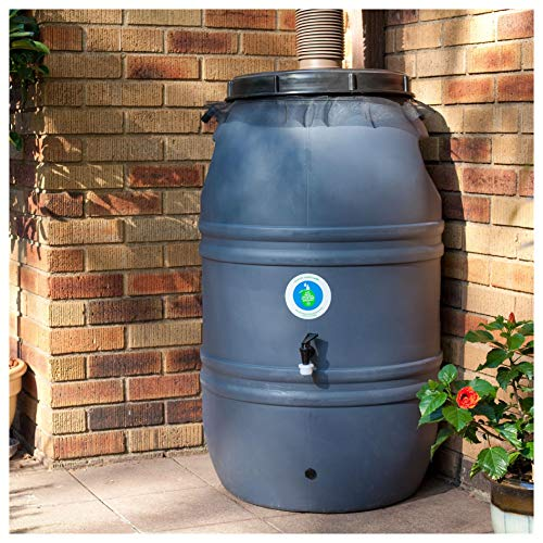 HEATAPPLY Rain Barrel, 60-Gallon HDPE Food Grade Plastic Rain Barrel with Screw on Cover ()