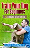 Train Your Dog For Beginners