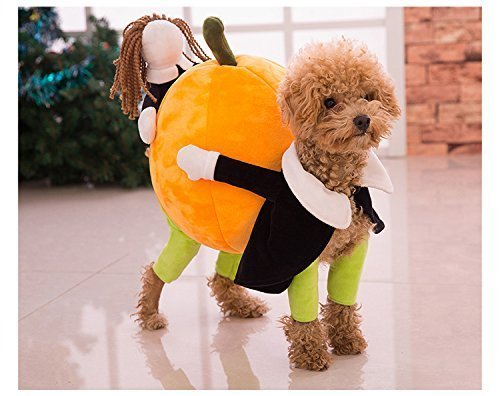 [Funny Dog Clothes for Small Dogs, Carrying Pumpkin Halloween Fancy Jumpsuit Puppy Costume, with Cuddly Soft Plush Better to Keep Warm in Winter, for Pet Dogs, Cats. (XL【 40cm (Back] (Army Dog Costumes)