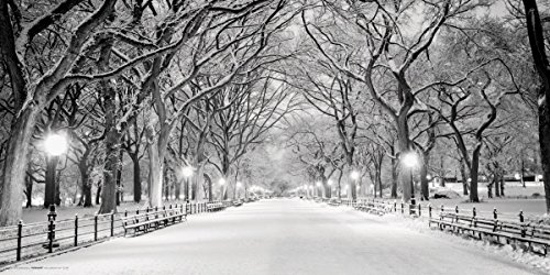 New York City (NYC) Central Park Mall in Snow Decorative Photography Poster Print - York Mall Of City New America