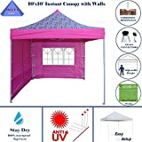 10'x10' Ez Pop up Canopy Party Tent Instant Gazebo 100% Waterproof Top with 4 Removable Pink Zebra - E Model By DELTA Canopies