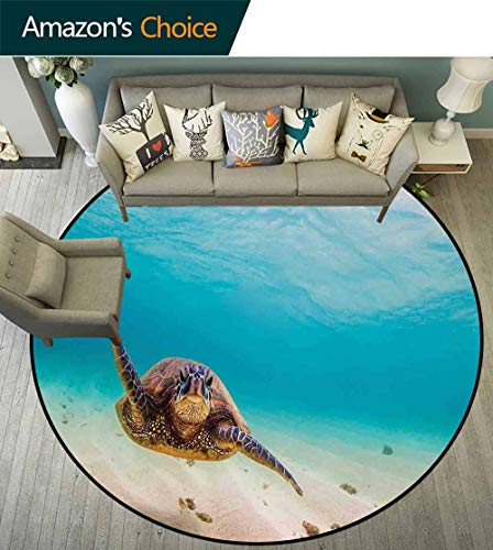 - Hawaiian Round Rug with Fringe,Underwater Scuba Diving Sea Turtle Nature Animal Swimming Wildlife Theme for Office,Blue Beige Brown,D-59