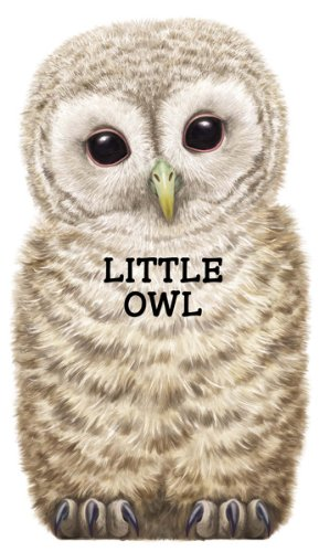Little Owl (Look At Me Books)