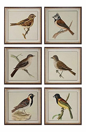 Spring Soldiers Bird Prints, S/6 (Uttermost Spring)