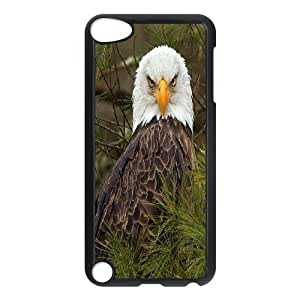 Cute eagle Hard Plastic Back Case Cover For For ipod Touch 5 Case FKGZ484191