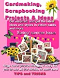 Cardmaking,Scrapbooking Projects and Ideas, Debbie May, 1481968327