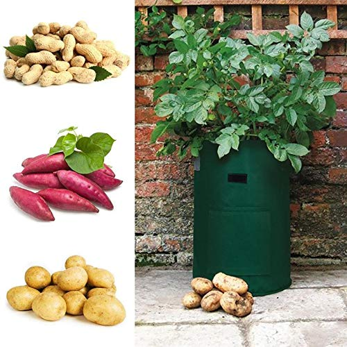 Sala-Tecco - PE Vegetable Potato Planting Bag Container Vertical Garden Vases Seedling Grow Greenhouse Seedlings Bags For Potato ()