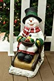 Alpine Corporation ZEN260SLR-S-TM Solar Snowman in Sleigh with 12 LED Lights and Timer, 24 Inch Tall, 24″, Multicolor