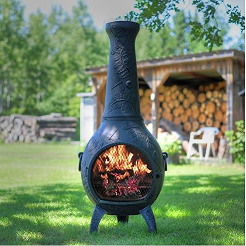 Pleasant Chiminea Outdoor Fireplace Wood Burning Dragonfly Design Home Interior And Landscaping Ologienasavecom
