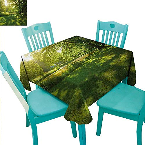 Green Decorative Textured Fabric Tablecloth Summer Park in Hamburg Germany Trees Sunlight Forest Nature Theme Scenic Outdoors Picture Washable Polyester - Great for Buffet Table, Parties, Holiday Din ()