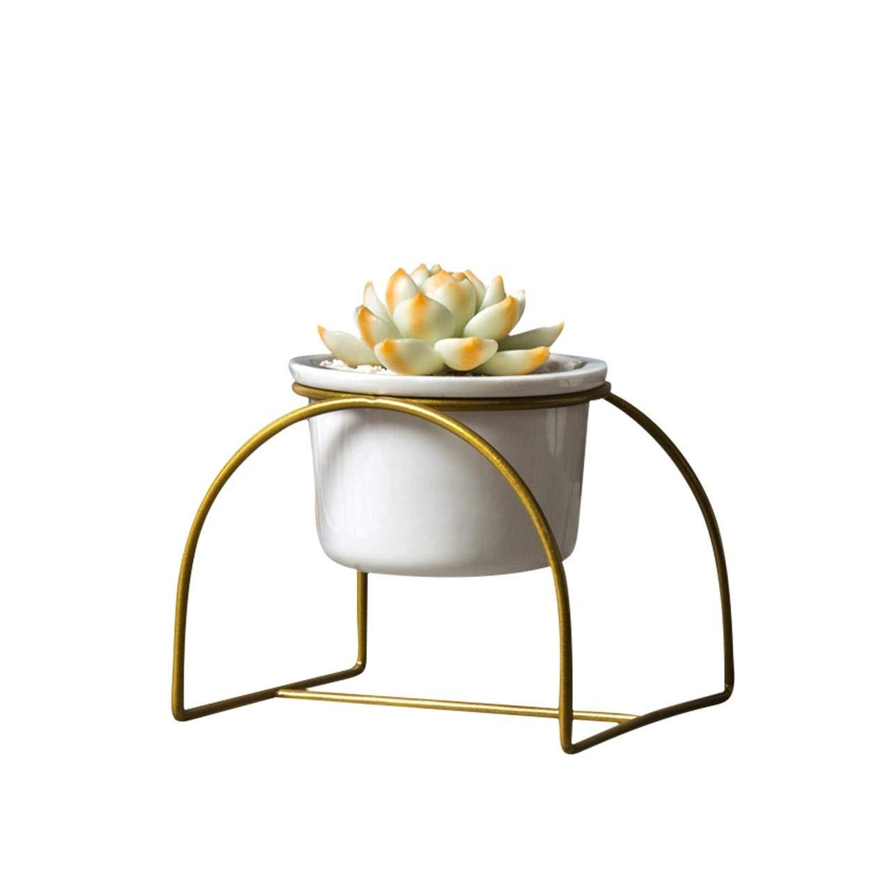 Amazon.com: Jarrón de flores – Jarrón de hierro simple con ...