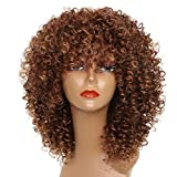 MISS WIG Long Afro Kinky Curly Wigs for Black Women16Inches 250g Synthetic Wigs African Hairstyle (BROWN)