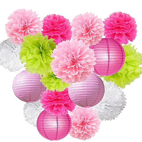 Craft paper lanterns shop craft paper lanterns online 16pcs pom poms decorations tissue paper flowers ball mixed paper lanterns craft kit for pink themed birthday party decor baby shower decor bridal shower mightylinksfo