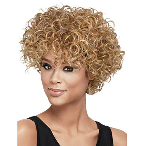 Beauty : US Women Short Curly Brown/Blonde Afro Black Halloween Cosplay Party Full Wigs