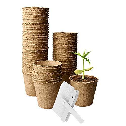OAMCEG 60 Pack Peat Pots 3 x 3 Inch, Seed Starter Pots/Plant Starters, Seed Germination Kit - Organic Biodegradable Pots 100% Eco-Friendly Enhance Aeration, Bonus 60 Plastic Plant Markers (Compostable Plant Pots)