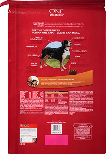 Purina-ONE-SmartBlend-Dry-Dog-Food-Chicken-Rice-Formula-311-Pound-Bag-Pack-of-1