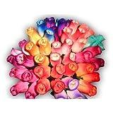 2 Dozen (24) Wooden Roses Colorful Arrangement in Sleeve New