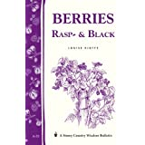 Berries, Rasp- & Black: Storey Country Wisdom Bulletin A-33