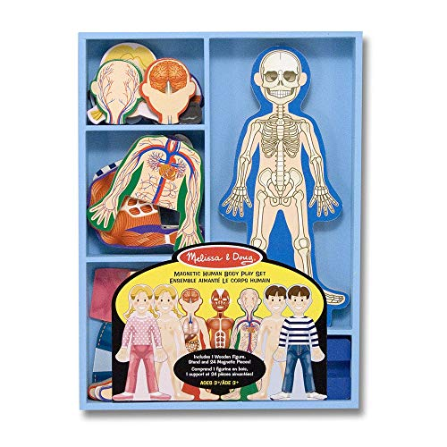 Melissa & Doug Magnetic Human Body Anatomy Play Set (Anatomically Correct Boy and Girl Magnets, 24 Magnetic Pieces and Storage Tray, Great Gift for Girls and Boys - Best for 3, 4, 5 Year Olds and Up)