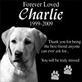 Personalized Pet Dog Cat Memorial 12''x12'' Engraved Black Granite Grave Marker Head Stone Plaque CHA1