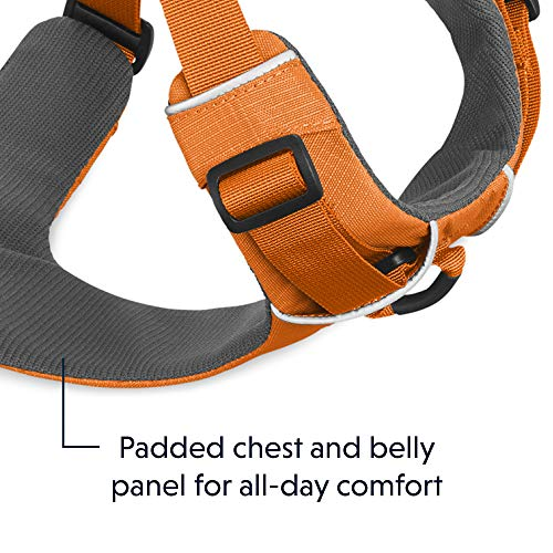 RUFFWEAR - Front Range, Everyday No Pull Dog Harness with Front Clip, Trail Running, Walking, Hiking, All-Day Wear, Orange Poppy (2017), Small