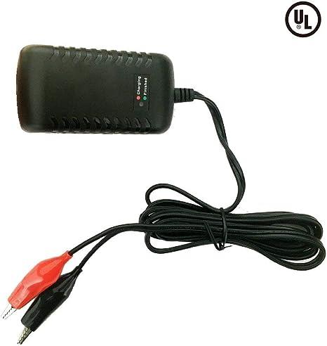 Amazon.com: Cargador de batería de ácido de plomo sellado ...