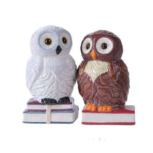 (Pacific Giftware Book Owls Hedwig Magnetic Salt and Pepper Shaker Kitchen Set 4.75 inches Tabletop Kitchen Decor)