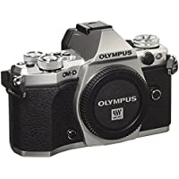 Olympus OM-D E-M5 Mark II (Silver, Body Only) with Electronic Flash - International Version (No Warranty)