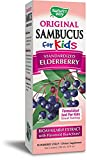 Health & Personal Care : Nature's Way Sambucus for Kids Bioavailable Elderberry, 8 Fl Oz