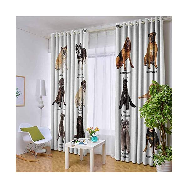 Dog Lover Decor Collection Blackout curtains - gasket insulation Group of Large Breed Dogs Together Bullmastiff Alaskan Akita Bernese Blackout curtains for the living room W96 x 108 Inch Beige Brown 1
