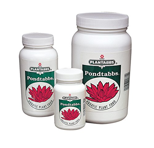 PondTabbs Aquatic Plant Food | 1000 ct