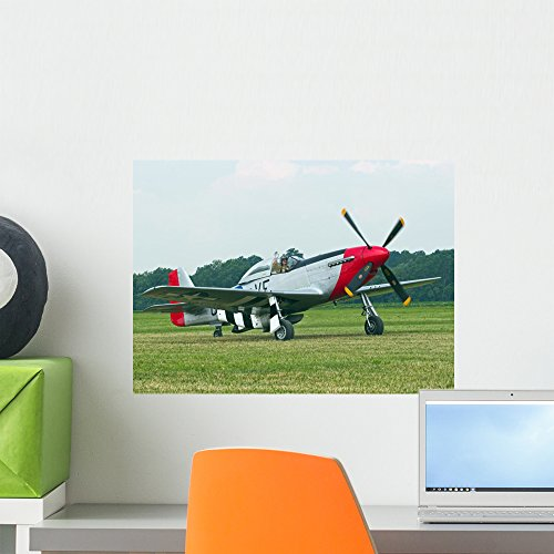 Wallmonkeys P-51 Mustang Wall Mural Peel and Stick Graphic (18 in W x 13 in H) WM167300 - P-51 Mustang Air Show