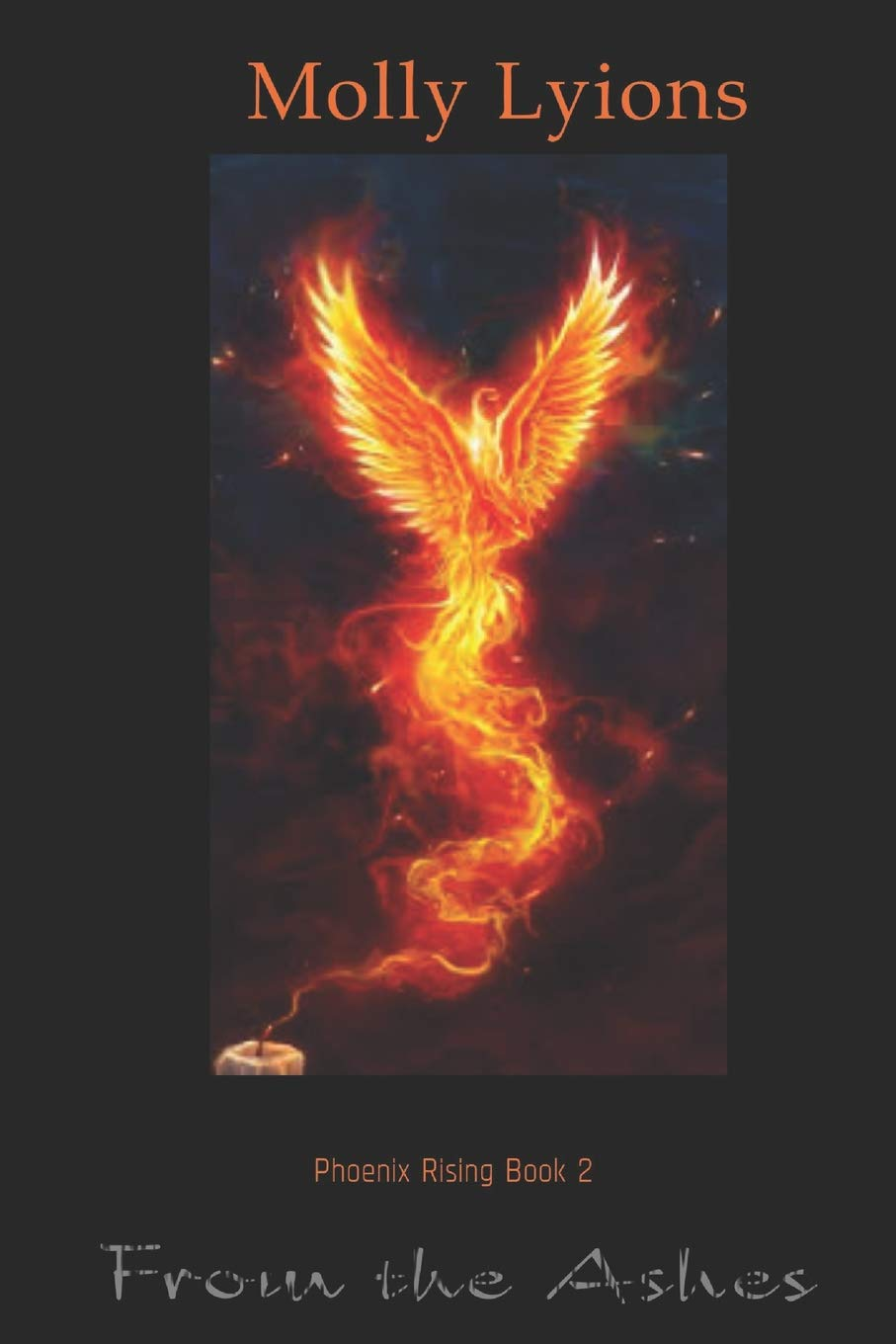 From the Ashes (The Phoenix Book 2)