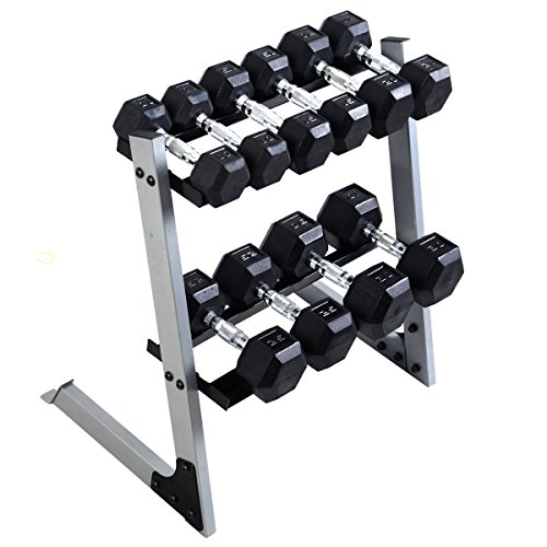 Gracelove 2 Tier 29'' Dumbbell Weight Storage Rack Home Stand Base + Multiple Weights Set by Love+Grace