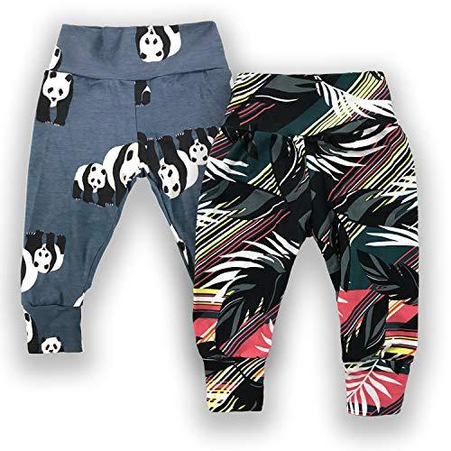 Chak & Chloe Baby Cotton Legging (Gray Blue Panda,Palm Leaves, 6 Months)