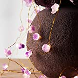 MIYA LIFE Natural Amethyst 10 ft 40 LED Copper Wire String Lights for Anniversary, Bedroom, Patio, Garden, Gate, Yard, Parties, Wedding